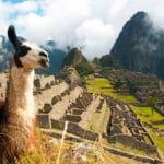 Machu Picchu Trip Main